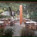 Φωτογραφία εστιατορίου ΜΑΝΩΛΗΣ (Ο) (ΘΡΑΚΟΜΑΚΕΔΟΝΕΣ)