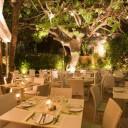 Φωτογραφία εστιατορίου VERDE PAPAGALO ON GRILL
