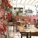 Φωτογραφία εστιατορίου ΚΙΤΡΟΜΗΛΟ-ΚΥΠΡΙΩΝ ΓΕΥΣΕΙΣ