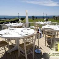Φωτογραφία εστιατορίου ALBEROBELLO